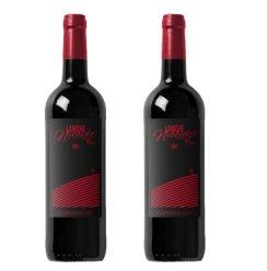 意大利进口红酒DOC 朗格内比奥罗Langhe Nebbiolo皮埃蒙特干红葡萄酒 2016年份 2瓶礼袋装