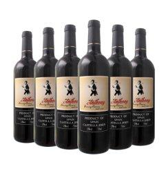 西班牙进口红酒 安东尼干红葡萄酒 750ml 6瓶优惠装