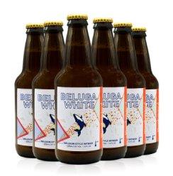 迷失美国进口精酿迷失海岸IPA世涛黑啤小麦白啤酒 6瓶装迷失海鲸小麦白啤