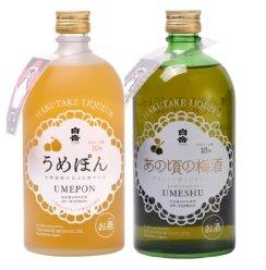 日本原装进口白岳梅酒果酒配制酒 720ml*2瓶组合装
