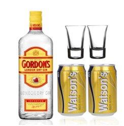 洋酒Gordon's Gin哥顿金酒 750ml 哥顿单瓶套装
