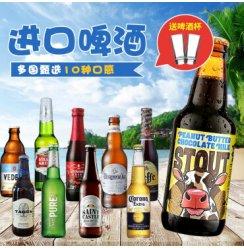 比利时进口精酿啤酒林德曼迷失海岸福佳法国啤酒1664黑啤白啤拉格组合 甄选10瓶组合(送啤酒杯2支)
