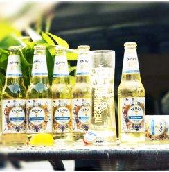 丹麦诱惑七号啤酒 tempt诱惑7号接骨木味 果味精酿甜啤酒330ml6瓶